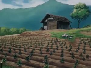 Jinenji's herb garden