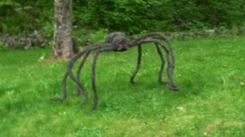GIANT SPIDER ATTACK