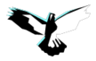 Icon-program-wings