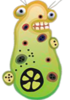 Bacterial Agent D