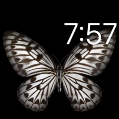 Motion Butterfly Watch Face
