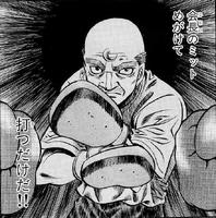 Kamogawa mitts