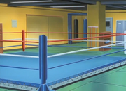 Kamogawa Boxing Gym Ring