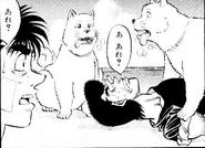 Wanpo meeting Hachi