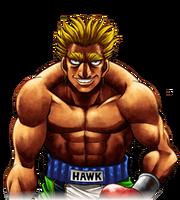 Hawk ps3