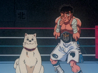 Ippo and Hachi