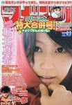 WSM - Issue 2-3 - 2010