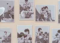 Pension Yoshio pictures of Kamogawa and Nekota's past
