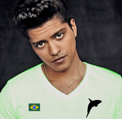 Bruno s15