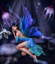 Pixie-secret-fairy-angel