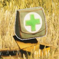 Weapon kit medic