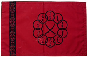 Ten Rings Flag