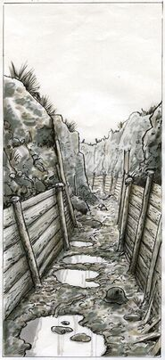 Trenches 7