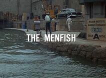 Themenfish