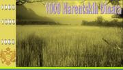 1000NAD