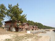 Togi Cabins