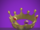 Crown of Royalty