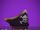 Pirate Tricorn