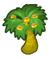 Carnauba tree small