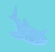 Whaleshark baby action