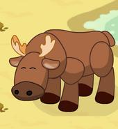 Moose2-3