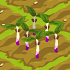 Bean Sprout Plant 70