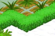 Greenhedge