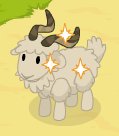 Angora goat harvestable