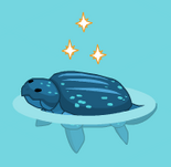 Leatherback turtle harvestable