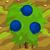 Blueberries 70