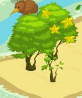 File:Three Star Fruit Trees.jpg