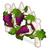Burgundy grape vine chart