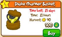 Snake charmer basket shop