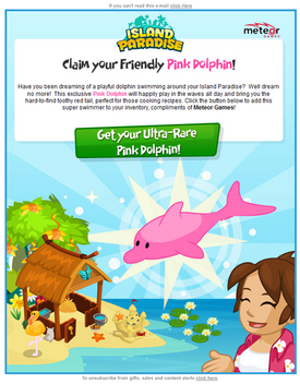 Pink Dolphin newsletter