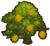 Durian Tree Icon