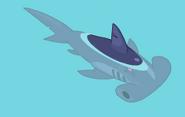 Hammerhead shark grownup