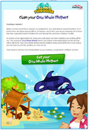 Orca Whale Mother email
