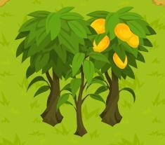 File:Three Mango Trees.jpg