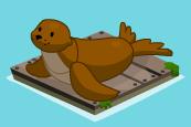 Floating sea lion a