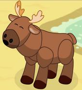 Moose2-2