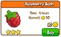 Raspberry bush shop