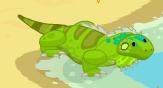 Iguana adult