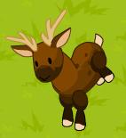 Deer act