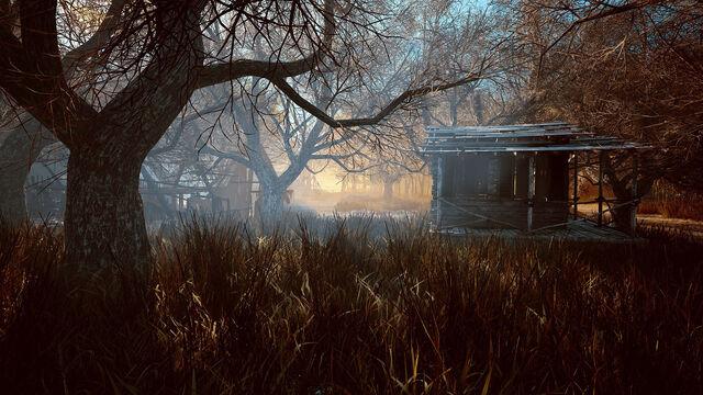 File:Spooky swamp.jpg