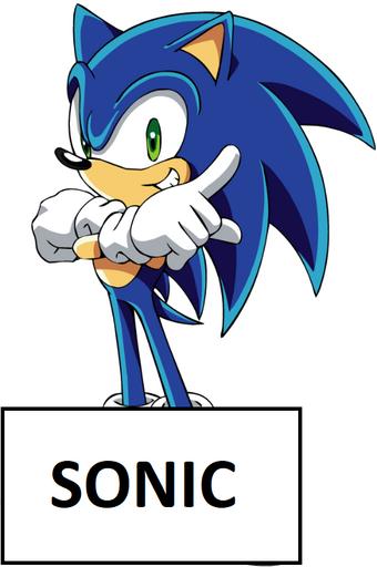 Sonic Islandside Adventures Wiki Fandom