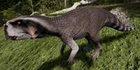 Racoon Psittacosaurus The Isle