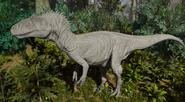 Albino Allosaurus The Isle