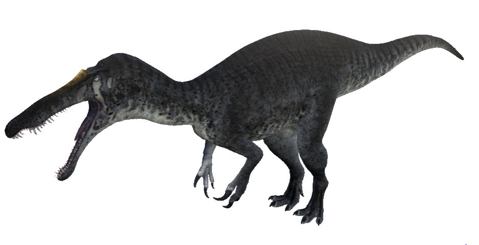 Image - Suchomimus The Isle.png | The Isle Wiki | FANDOM powered ...