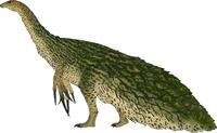 Kakapo Therizinosaurus The Isle