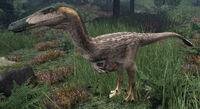 Heron Austroraptor The Isle